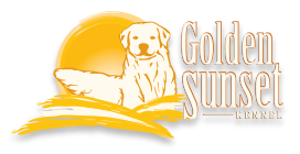 Logo Golden Sunset